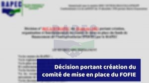Read more about the article Décision portant création du comité de déploiement du FOFIE